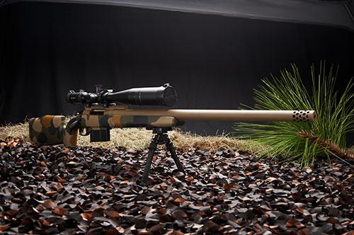 custom_rifle_2