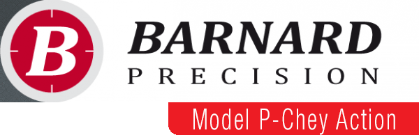 barnard_logo_with_tab_model_p-chey